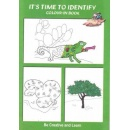 time_to_identify_colouring