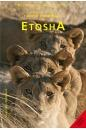 etosha_english_cover_2019-gr